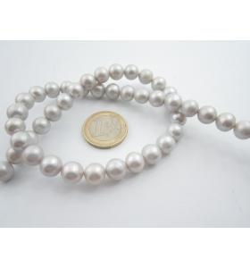 1 filo di perle australiane di 7,5/8 mm grigio perla chiarissimo lungo 39 cm