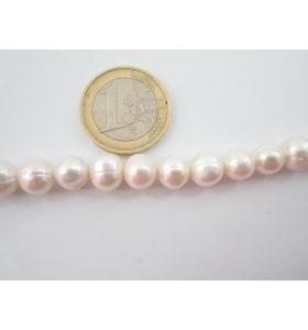 filo di perle bianche coltivate in acqua dolce tondeggianti 8/9 mm