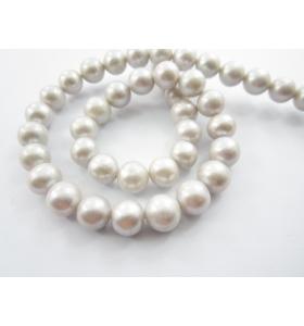 1 filo perle australiane di 9 mm grigio perla chiarissimo lungo 39 cm