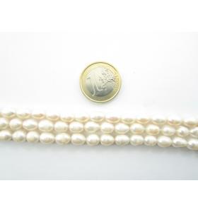 1 filo perle coltivate in acqua dolce della misura di circa 8x6 mm