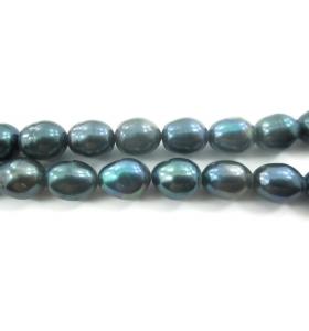4  perle scaramazze grigie coltivate in acqua dolce di 11x9 mm circa