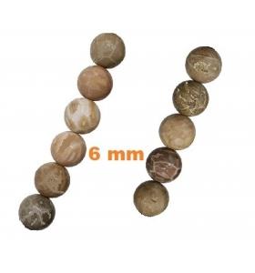 1 filo di Diaspro fossile...