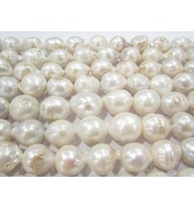 1 filo di perle grandi australiane grezze 17x14 mm lungo 43 cm contiene 26 perle